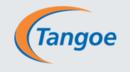 Tangoe TEM Software Tool