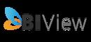 BIView for NAV
