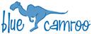 BlueCamroo Software Tool