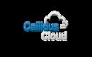 CallidusCloud Commissions