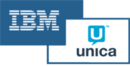 IBM Unica Leads Software Tool