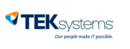 TEK Systems IT Services Software Tool