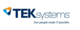 TEK Systems IT Services