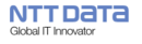 NTT Data ERP Support Services