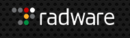 Radware Managed Security Service Software Tool