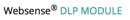 Websense® DLP MODULE
