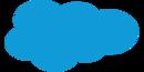Salesforce Software Tool