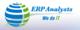 ERP Analysts