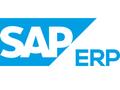 SAP ERP Software Tool